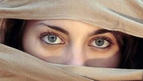 眼睛各部位图解